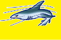 sharks with laser beams 404