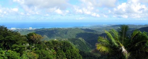 El Yunque National Forest and Condado