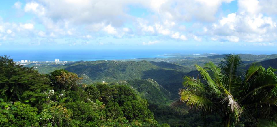 El Yunque National Forest and Condado